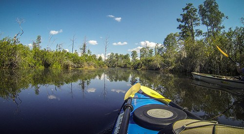 Lowcountry Unfiltered at Okefenokee-121