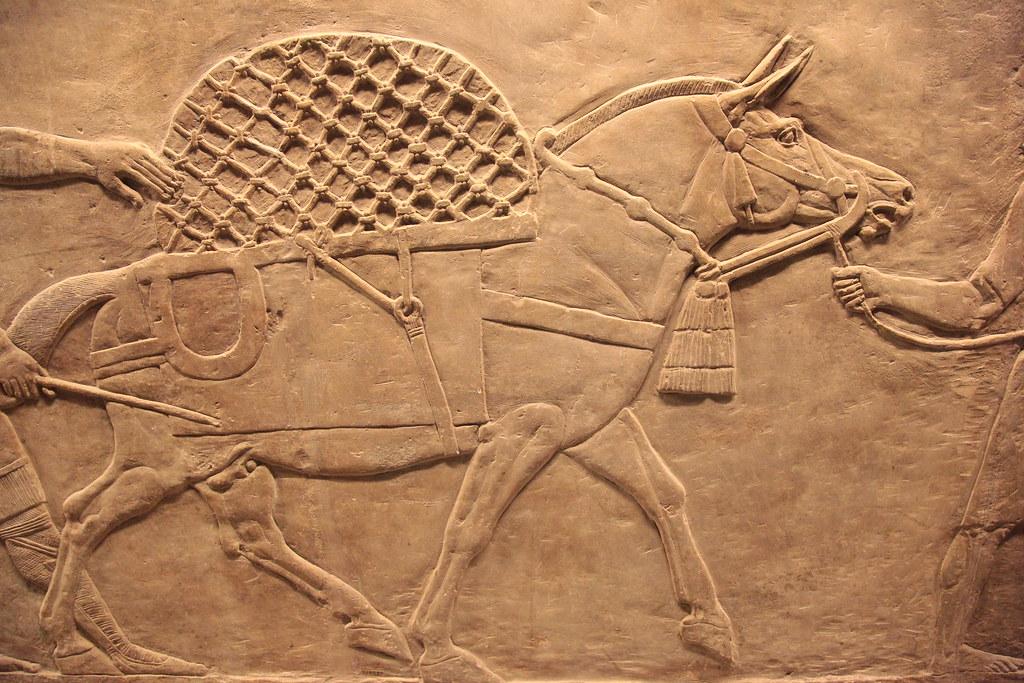 Animale da somma in un basso rilievo assiro  Anticamente