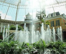 Lot Of Fountains Gaylord Opryland T