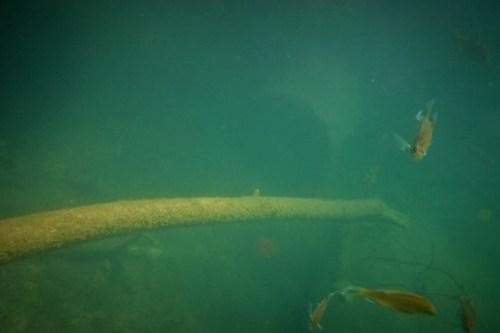 Lake Jocassee Kayaking-91