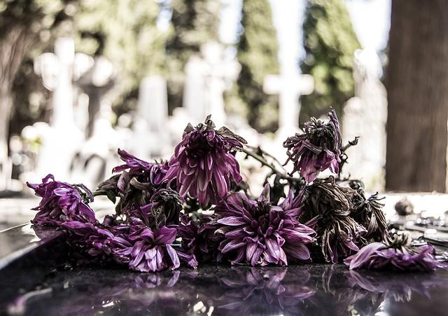 08 Naturaleza muerta