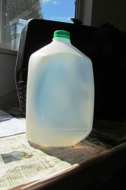 One Gallon Milk Jug
