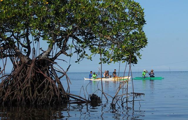 Paddleboat Ride to Lamanoc Island