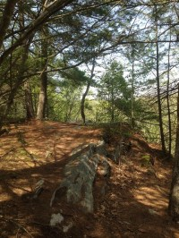 Old Furnace State Park - The A to Z of CT State Parks