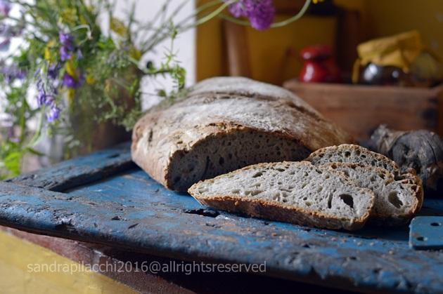 pane grano arso DSC_9229
