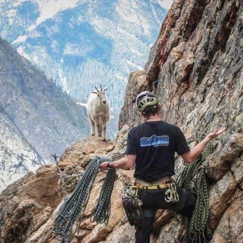 La cabra y el escalador