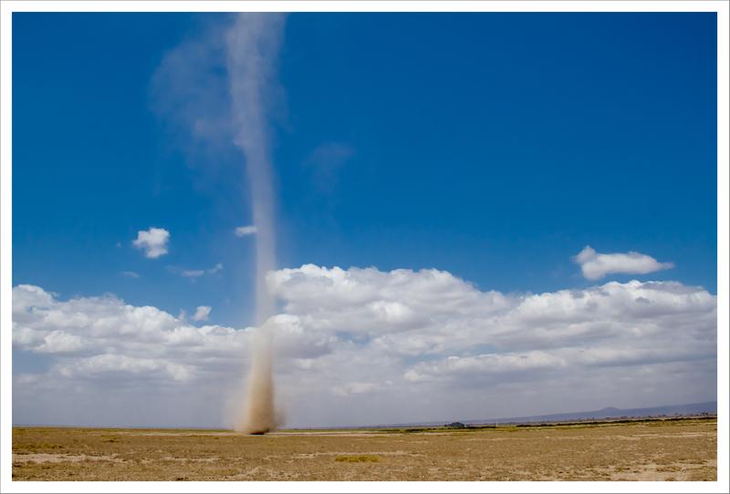 Amboseli-134