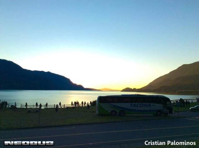 Bus 160 Lago Neltume