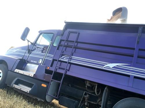 Unloading into Purple.