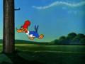 Woody Woodpecker Episode To Catch A Woodpecker