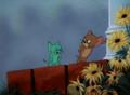 Tom And Jerry Episode Smitten Kitten