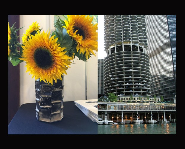 vases and parking garages
