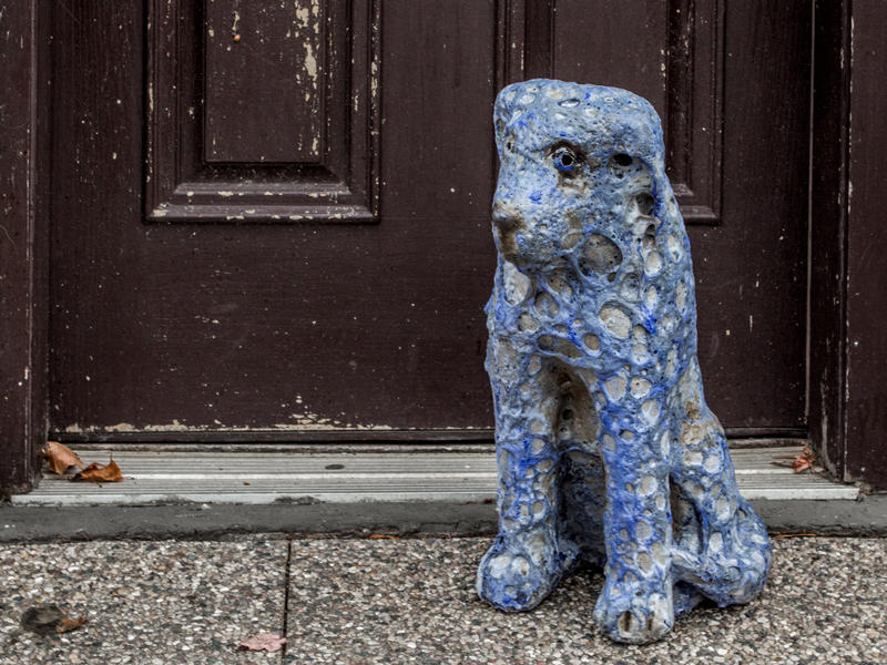 Blue dog by mark chatterley