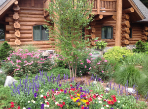 Flowers in bloom landscaping project by Grand Haven Garden House