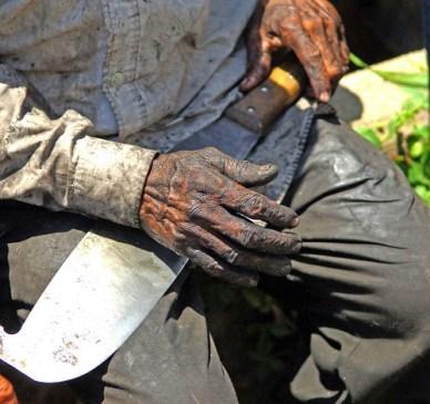 ,sentença contra trabalho escravo completa 40 anos, ESCRAVO