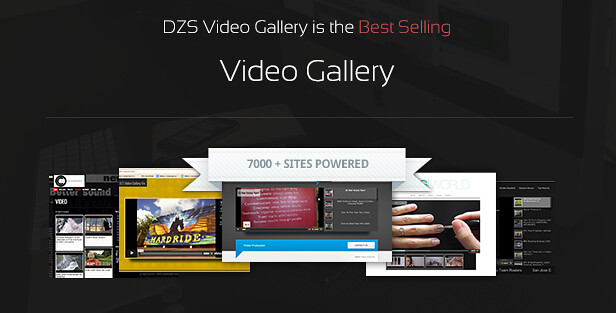 DZS Video Gallery is the best selling video gallery