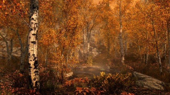 Skyrim 4K Forest on PS4 Pro