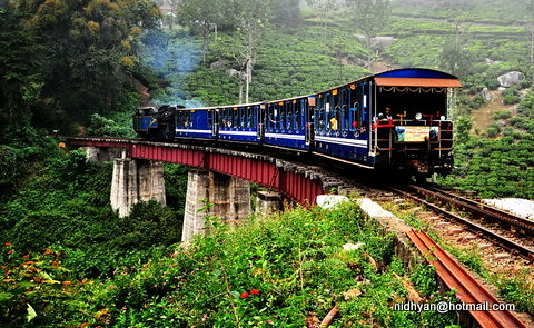 nilgiri mount. train