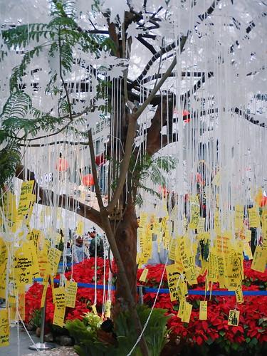 wishing tree- dianravi.com