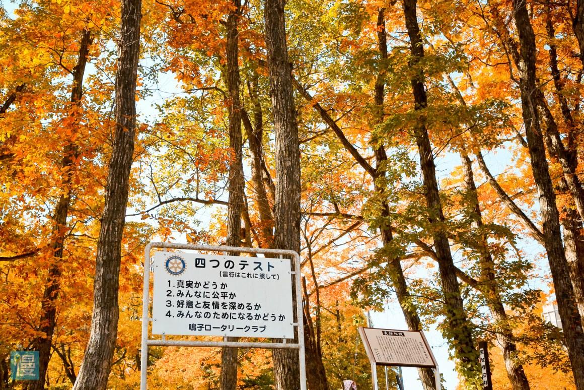 日本賞楓2019紅葉預測 鳴子峽賞楓 - 401