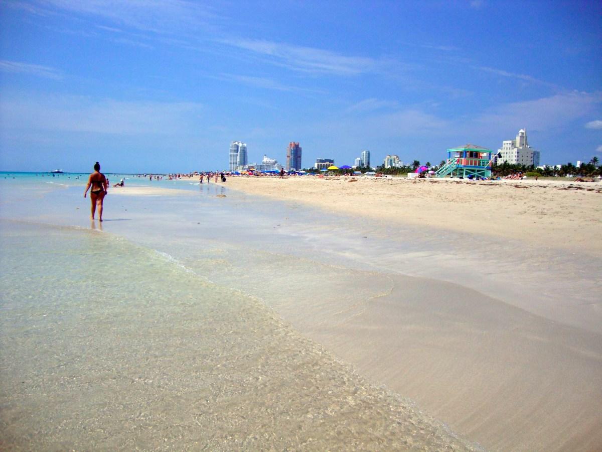 Qué hacer y ver en Miami, Florida qué hacer y ver en miami - 31012051010 51b89ff72b o - Qué hacer y ver en Miami