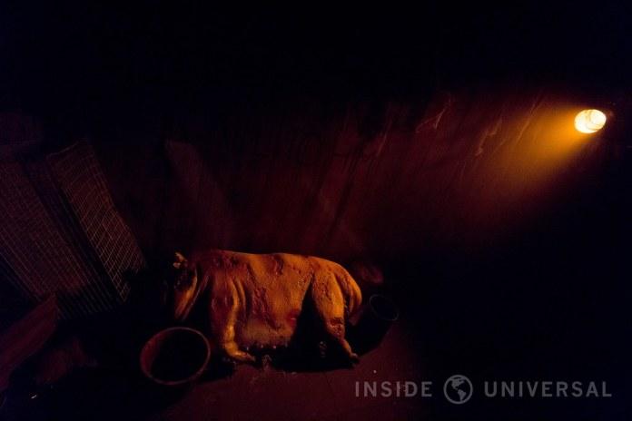 Knott's Scary Farm (2016) - Red Barn