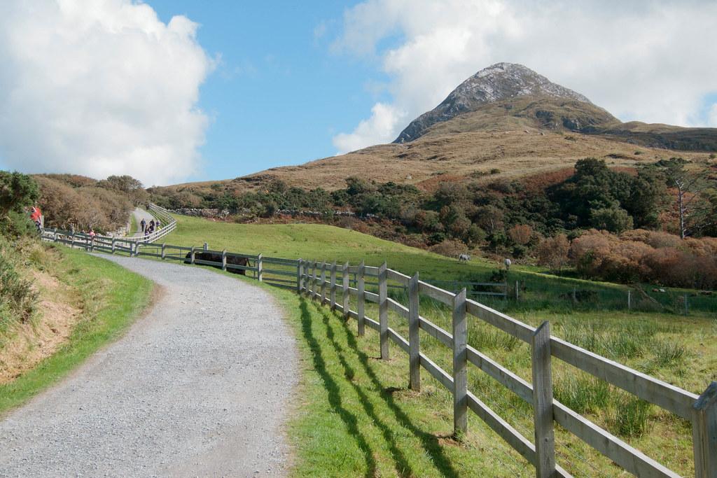 At Connemara National Park