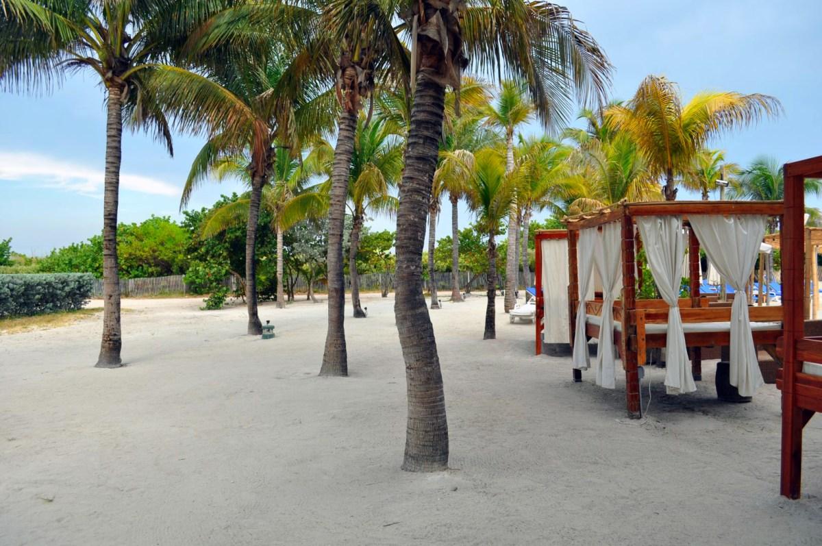 Qué hacer y ver en Miami, Florida qué hacer y ver en miami - 31344979026 31dce3c3a2 o - Qué hacer y ver en Miami