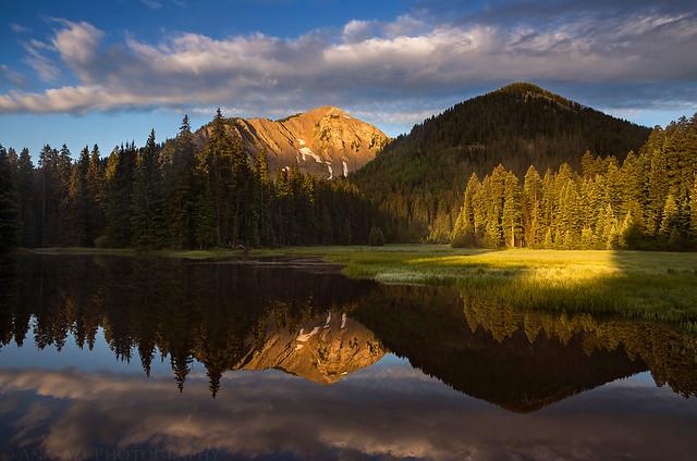 Spotlight Reflection