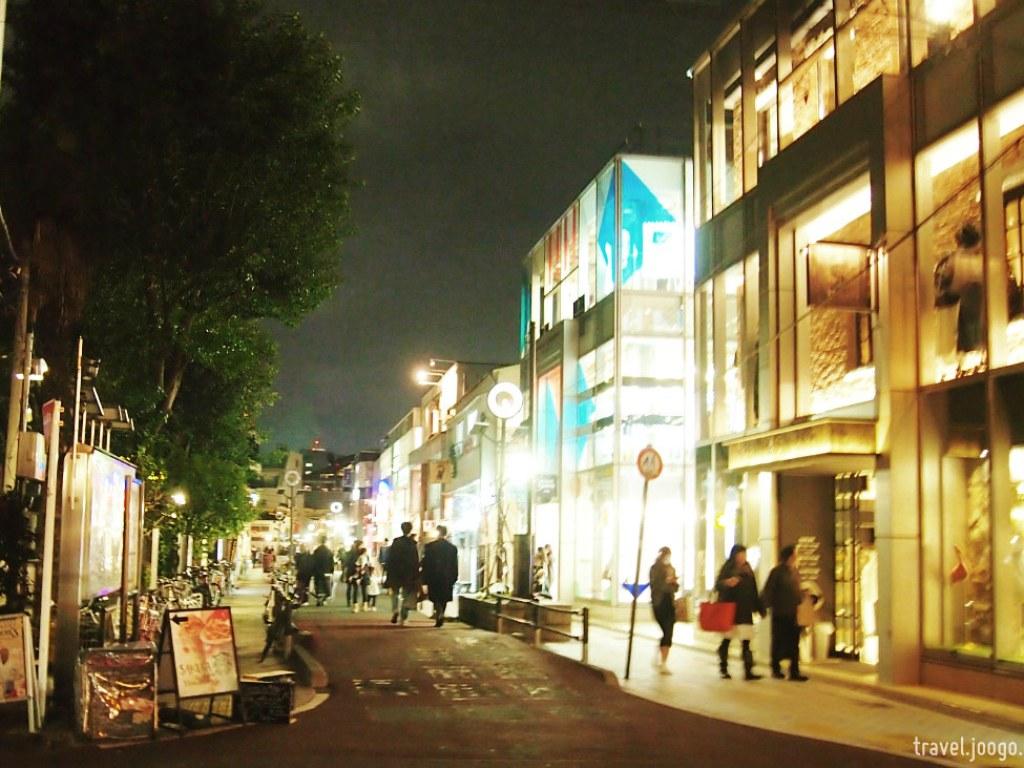 Cat Street to Shibuya - travel.joogo.sg