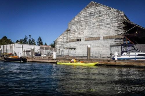 La Conner Kayaking-2