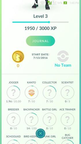 Pokemon Go Profile