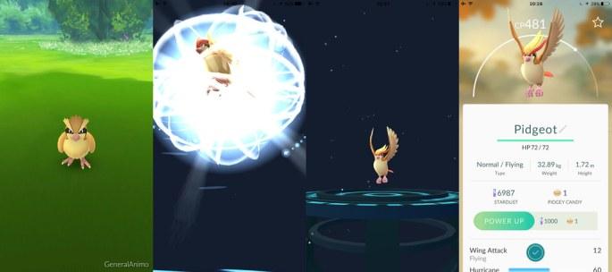 Pokemon-Go-Evolution