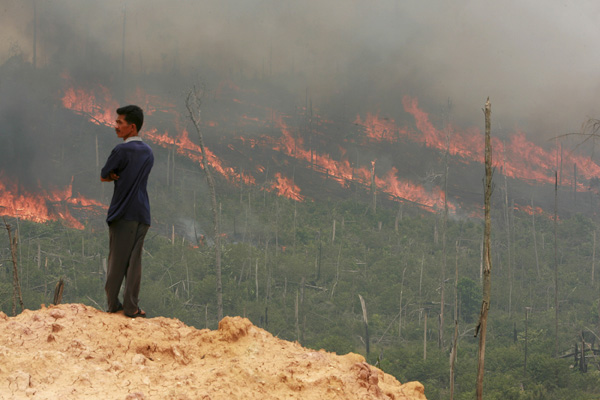 Indonesian forest fires