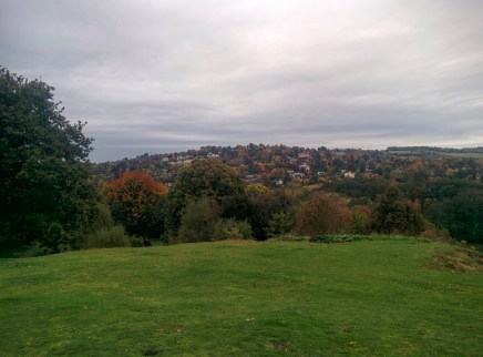 Guildford and Pewley downs in autumn colours