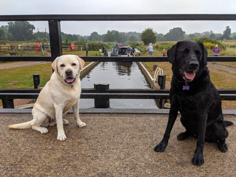 Photo break at St Catherine's lock on return leg of today's run. Drizzled all through the run, and boys still went paddling into the river every chance they got.