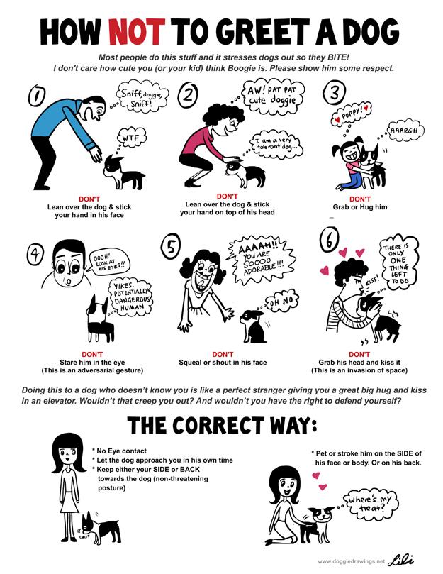 Understand Dog Language Chart 3