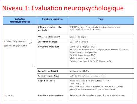 niveau 1 : évaluation neuropsychologique