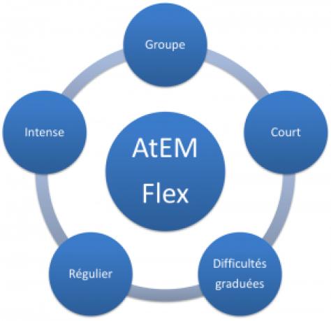 ATeM Flex - Laurent Lecardeur - diapo7