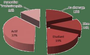 Caractéristiques des participants, statut professionnel