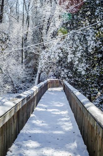 Greenville Snow-001