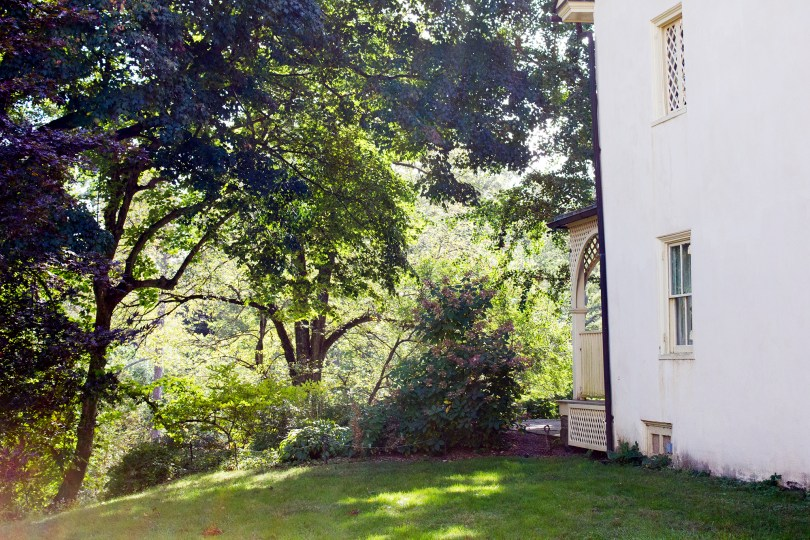 tyler-arboretum-lachford-side
