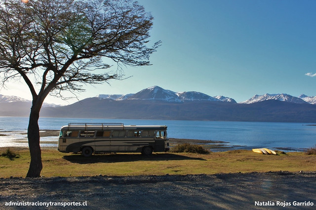 Puerto Williams-001