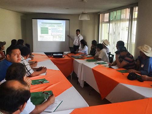 Capacita CONAFOR a productores de madera en la Zona Media