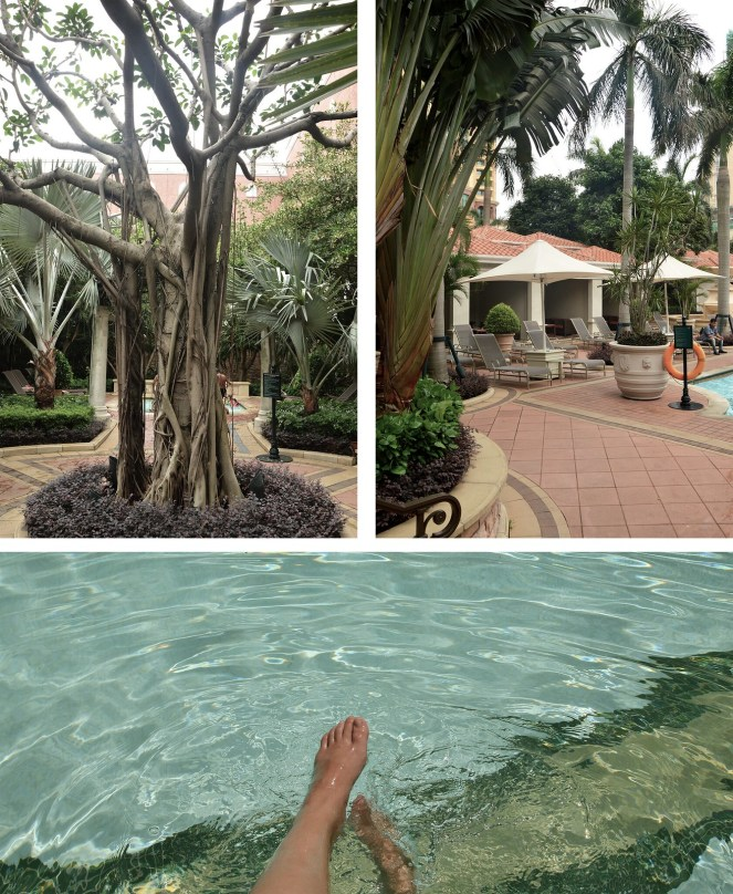 summer, raybans, the venetian macao, hotel pool, tree