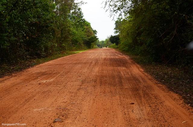 Đường đất đỏ xuyên rừng