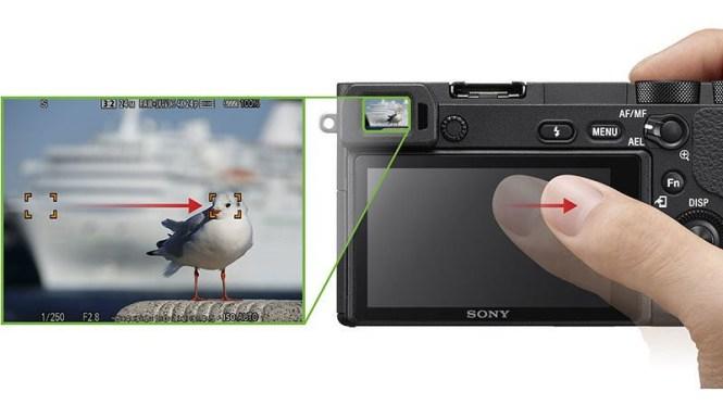 focusswipe-800x449