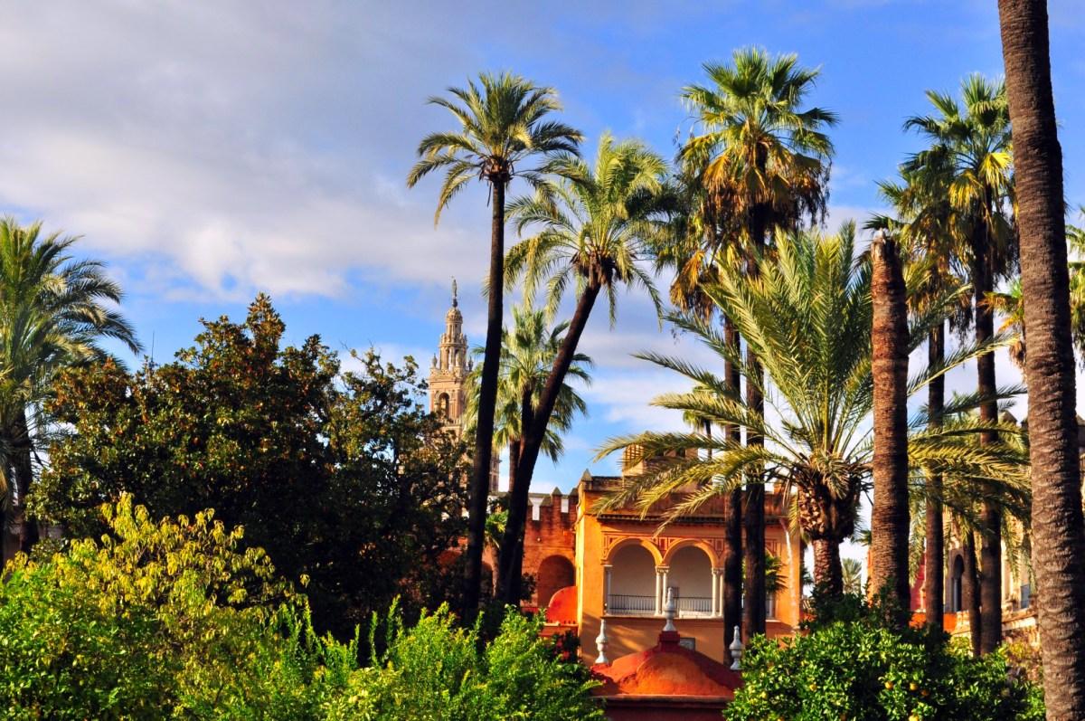 Qué ver en Sevilla, España - What to see in Sevilla, Spain Qué ver en Sevilla Qué ver en Sevilla 30706403163 0dbd531981 o