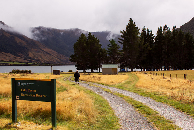 Lake Taylor - DOC Camp Site