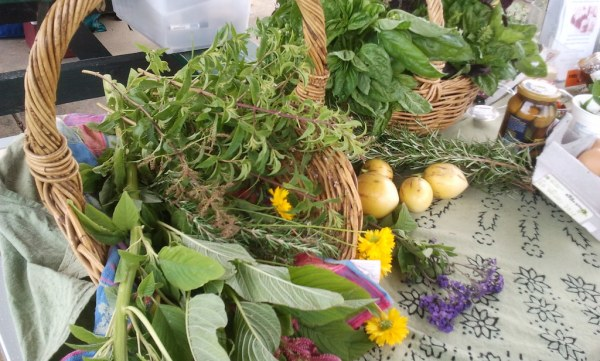 Herbs and flowers - Sustainable Fawkner Food Produce Swap